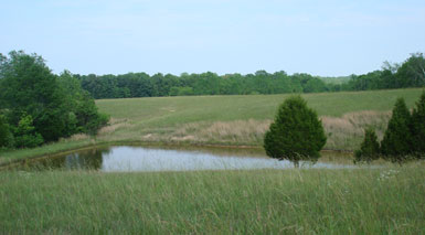 Land For Sale With Pond In Tennessee